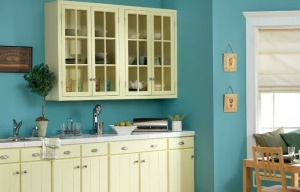 Kitchen Paint Color